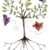 A tree with butterflies flitting around it that symbolize how to make friends