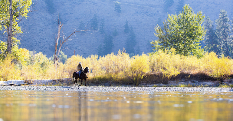 A horse and rider in a wilderness where Montana adoption laws may apply