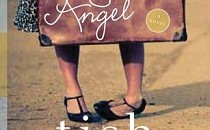 Books about adoption: The Search Angel Cover